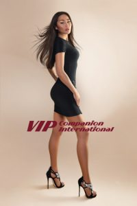 VIP Companion International Agency